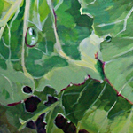 Cabbage 'Spring Hero' - acrylic by Kate Chitham, artist and graphic designer working in Kent and the south east