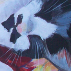 Lily the cat by Kate Chitham, artist and graphic designer working in Kent and the south east